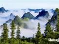 感叹那些长年累月在崇山峻岭播绿护绿的林业人